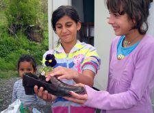 Očuvanje okoline u cilju poboljšanja životnih uslova
